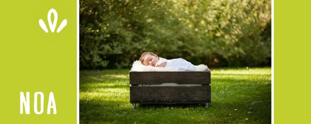 Noa 5 weken oud | babyfotografie Middelburg