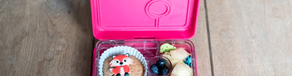 A Bento lunch box – Say what?