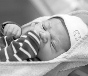 Geboortefotografie Goes | Vers van de Pers